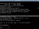 Erro 1045 en MySQL